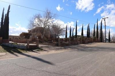 Hesperia Single Family Home For Sale: 17385 Trinity Drive
