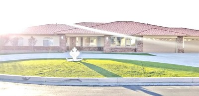Apple Valley Single Family Home For Sale: 12750 Quail Covey Road