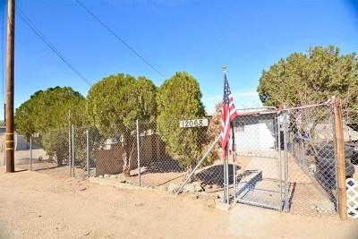 Adelanto Single Family Home For Sale: 12056 Bartlett Avenue