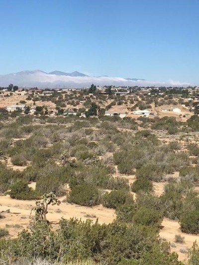 Hesperia Residential Lots & Land For Sale: Farmington/Ryeland Road