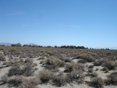 Victorville Residential Lots & Land For Sale: Bear Valley/Duncan Road