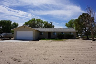 Newberry Springs Single Family Home For Sale: 48163 Valley Center Road