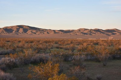 Helendale Residential Lots & Land For Sale: 18556 Panamint