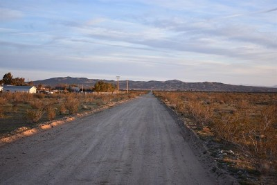 Helendale Residential Lots & Land For Sale: 18621 Panamint