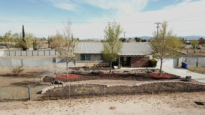 Apple Valley Single Family Home For Sale: 21722 Panoche Road