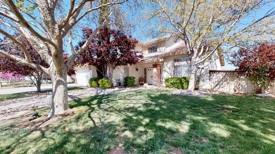 Victorville Single Family Home For Sale: 12755 Red River Road