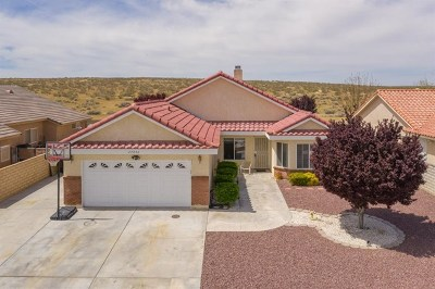 Helendale Single Family Home For Sale: 27242 Silver Lakes Parkway