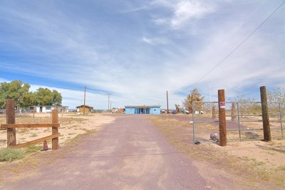 Newberry Springs Single Family Home For Sale: 45954 Silver Valley Road