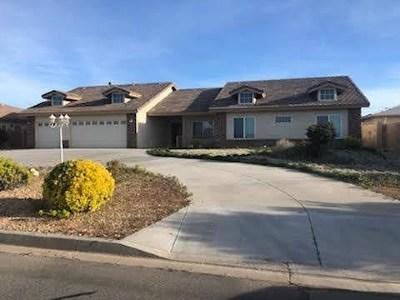Hesperia Single Family Home For Sale: 16771 Crockett Avenue