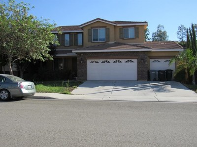Lake Elsinore Single Family Home For Sale: 53031 Cressida Street