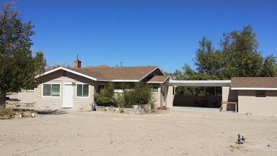 Lucerne Valley Single Family Home For Sale: 10225 Custer Avenue
