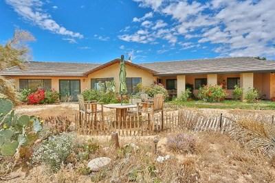 Apple Valley Single Family Home For Sale: 10022 Cerra Vista Street