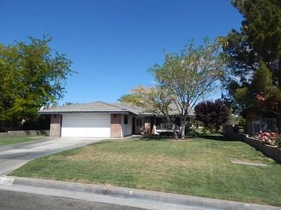 Helendale Single Family Home For Sale: 27850 Jasmine Lane