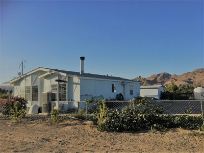 Lucerne Valley Single Family Home For Sale: 10183 Buena Vista Road