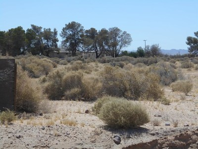 Newberry Springs Residential Lots & Land For Sale: Cottonwood Road