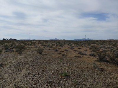 Newberry Springs Residential Lots & Land For Sale: 1 Joy Road