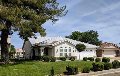Helendale Single Family Home For Sale: 26290 Fleet Lane