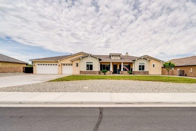 Apple Valley Single Family Home For Sale: 12378 Macintosh Street