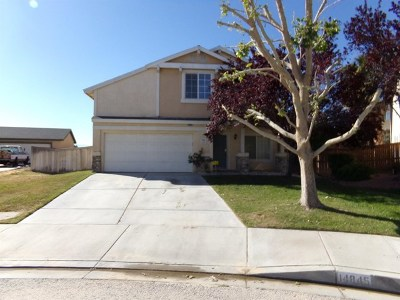 Victorville Single Family Home For Sale: 14845 Rockrose Street