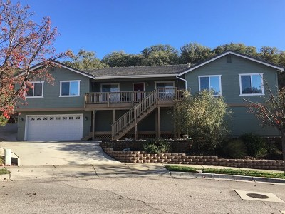 Paso Robles Single Family Home For Sale: 518 Red River Drive