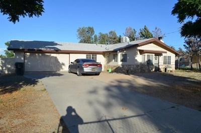Hesperia Single Family Home For Sale: 9977 Oakwood Avenue