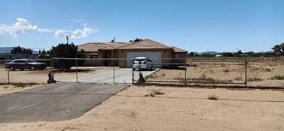 Hesperia Single Family Home For Sale: 16173 Olive Street