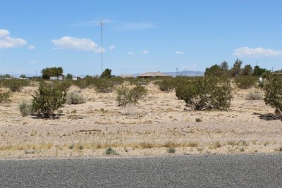 Newberry Springs Residential Lots & Land For Sale: 45586 Black Butte Road