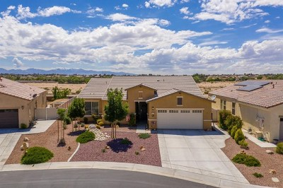 Apple Valley Single Family Home For Sale: 10512 Green Valley Road