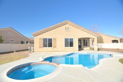 Apple Valley Single Family Home For Sale: 10029 Redstone Road