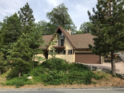 Lake Arrowhead Single Family Home For Sale: 28231 N Bay Road