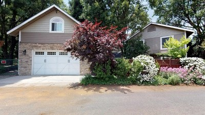Crestline Single Family Home For Sale: 1078 Playground Drive