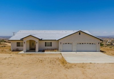 Apple Valley Single Family Home For Sale: 9025 Central Road