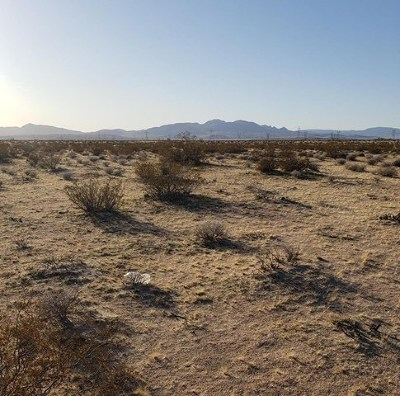Newberry Springs Residential Lots & Land For Sale: Harvard & Camelot Road