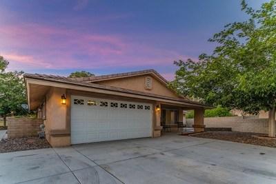 Helendale Single Family Home For Sale: 27872 Jasmine Lane