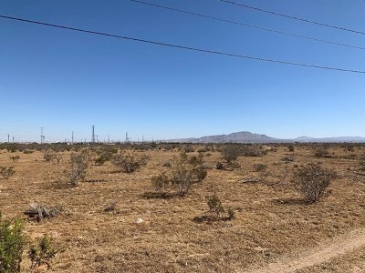Victorville Residential Lots & Land For Sale: Topaz Street