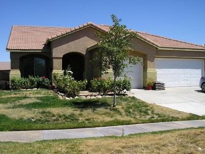 Hesperia Single Family Home For Sale: 13874 Pinellia Street