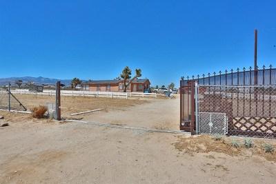 Phelan Single Family Home Active Under Contract: 11618 Nevada Road
