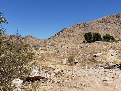 Apple Valley Residential Lots & Land For Sale: Via Vista Road