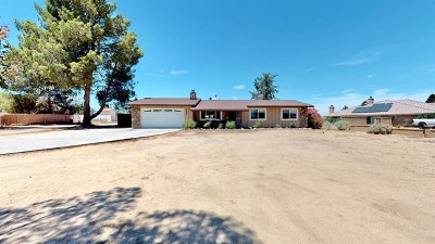 Apple Valley Single Family Home For Sale: 15006 Pamlico Road