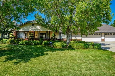 Apple Valley Single Family Home For Sale: 16250 Tao Road