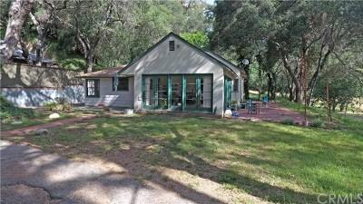 Monrovia Single Family Home For Sale: 539 Cloverleaf Drive