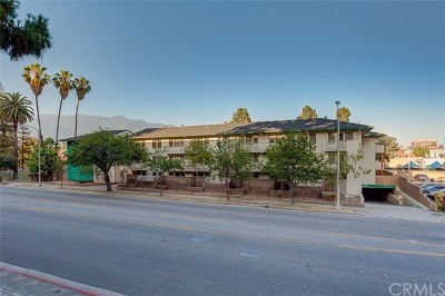 Pasadena Multi Family Home For Sale: 262 N Los Robles Avenue