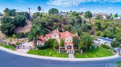 San Dimas Single Family Home For Sale: 1048 Via Romales
