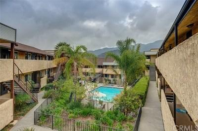 La Crescenta Multi Family Home For Sale: 3030 Montrose Avenue