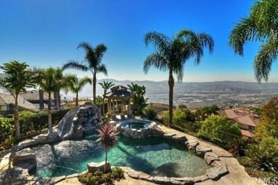 Yorba Linda Single Family Home For Sale: 22805 Hidden Hills Road