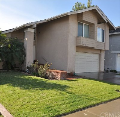 Lake Forest Single Family Home For Sale: 24602 Via Tonada