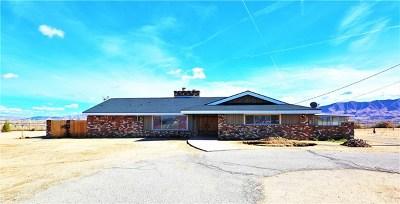 Hesperia Single Family Home For Sale: 10269 Choiceana Ave