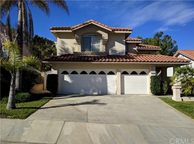 Rowland Heights Single Family Home For Sale: 2309 Nogales Street