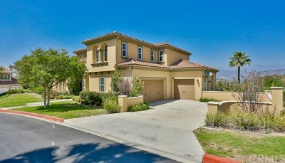 San Dimas Single Family Home For Sale: 121 Calle Colorado