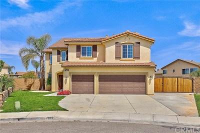 Eastvale Single Family Home For Sale: 7862 Jeannie Ann Circle